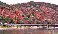 Arashiyama_koyo